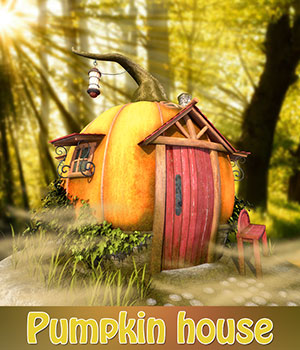 Pumpkin house 3D Models 1971s