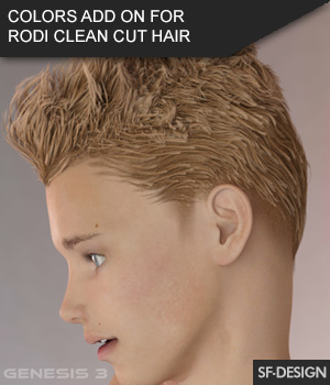 Colors Add On for Rodi Clean Cut Hair for Genesis 3 Male(s) 3D Figure Assets SF-Design