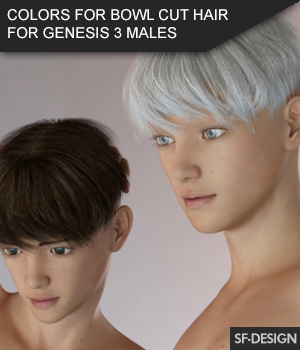Colors Add On for Bowl Cut Hair for Genesis 3 Males 3D Figure Assets SF-Design