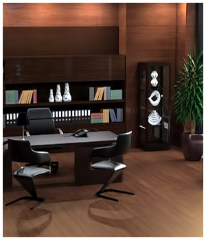 Executive Office for Poser and DS