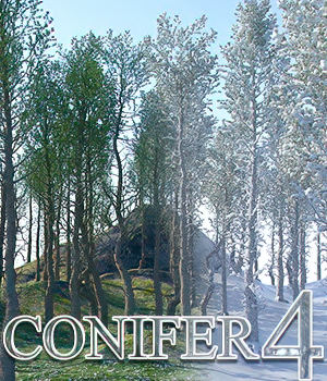 Flinks Conifer 4