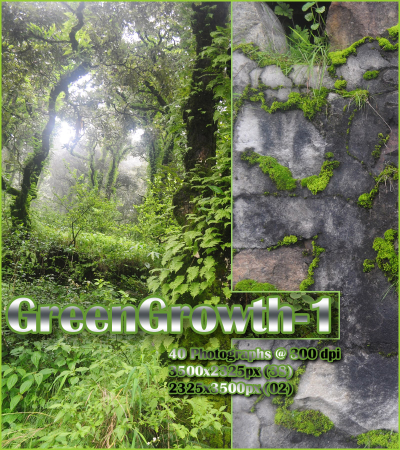 GreenGrowth-1