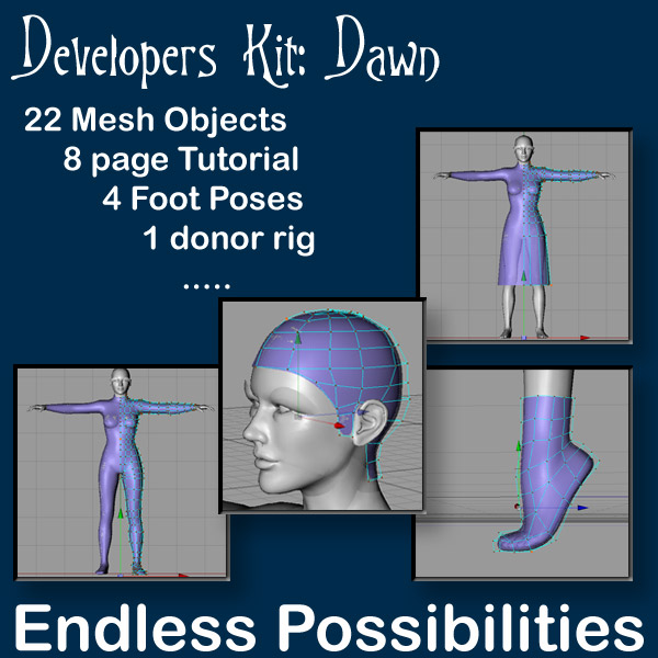 Dawn Developers Kit