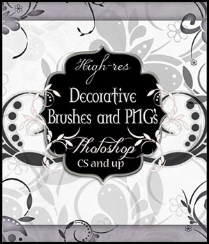 Decorative Brushes and PNG's 2D And/Or Merchant Resources antje