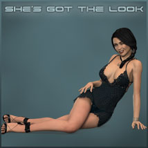 She's Got The Look image 5