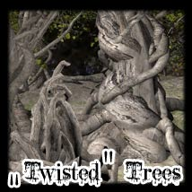 Twisted Trees 3D Models Ravyns