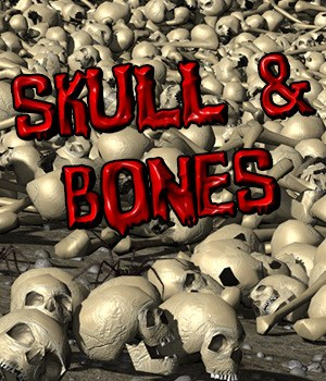 Flinks Instant Meadow 2 - Skull&Bones 3D Models Flink