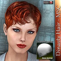 Dinasty Hair - MSC 3D Figure Assets 3Dream