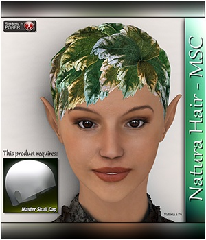Natura Hair - MSC 3D Figure Assets 3Dream