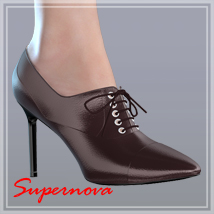 Teacher's shoes 3D Figure Essentials -supernova-