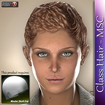 Class Hair - MSC 3D Figure Assets 3Dream