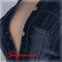 Sexy Denim 3D Figure Essentials -supernova-
