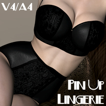 Pin Up Lingerie V4-A4 3D Figure Assets nikisatez