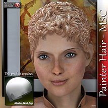 Painter Hair - MSC 3D Figure Assets 3Dream