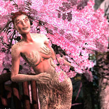 Enchanted Forest: Sakura, The Lady of the Woods image 2