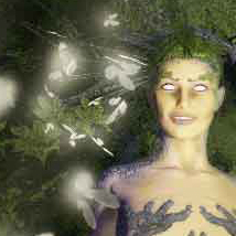 Enchanted Forest: Sakura, The Lady of the Woods image 4