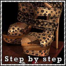 Step by Step: Stylish Footwear sandra_bonello