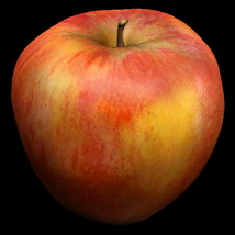 Apples 3D Models Bijan_Studio
