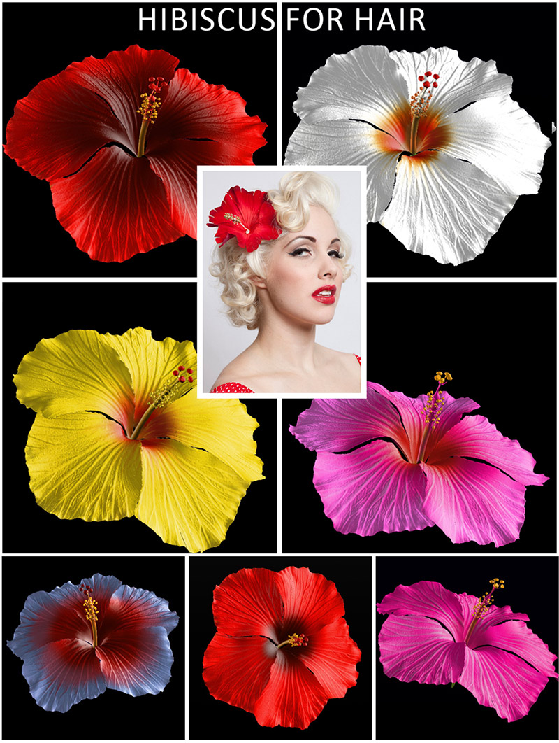Hibiscus Flower for Hair