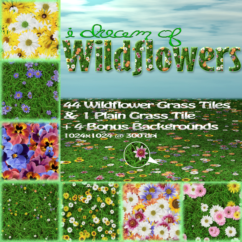 LTS~I Dream of Wildflowers by Tergiet