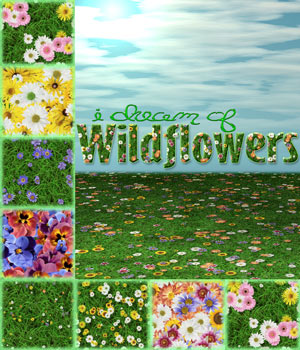 LTS~I Dream of Wildflowers 2D And/Or Merchant Resources Themed Tergiet