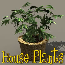 House Plants 3D Models dexsoft-games