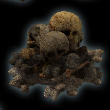 Catacombs image 2