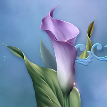 Moonbeam's Lovely Lilies image 5