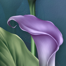 Moonbeam's Lovely Lilies image 7
