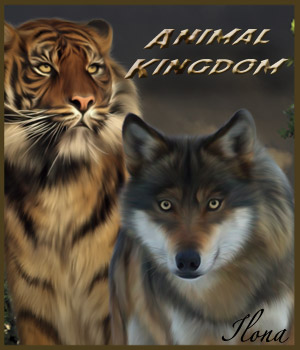 Animal Kingdom 2D Graphics ilona
