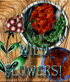 Harvest Moons Wild Flowers!  2D Merchant Resources MOONWOLFII