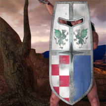 FANTASY SHIELDS - Extended License image 2