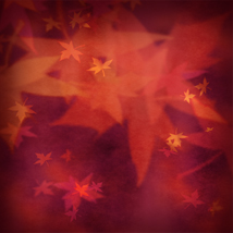 Nature's Miscellany - Abstract Natural Backgrounds image 3