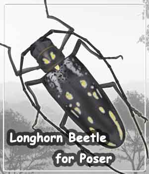 Longhorn Beetle for Poser 3D Models JTrout
