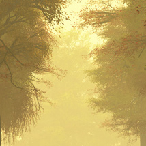 RenderSpots Autumn Dreams for Poser and DAZ Studio image 1