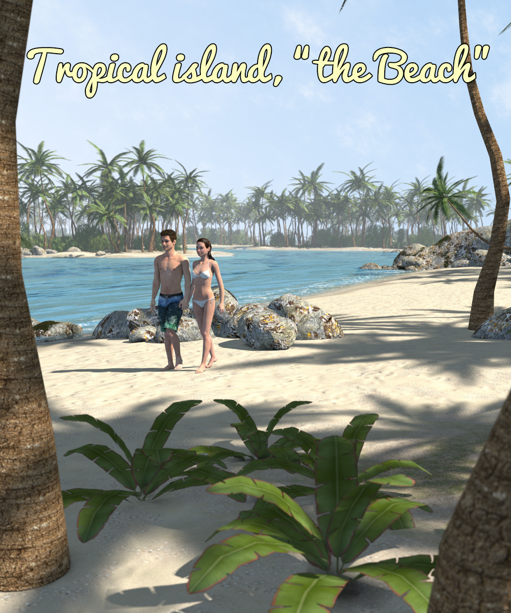 Tropical island, the Beach - Extended License