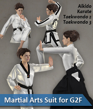 Dynamic Martial Arts Suit G2F 3D Figure Assets zollacce