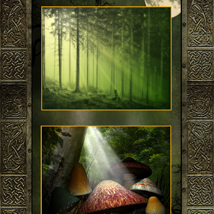 Enchanted Forest Backgrounds image 3