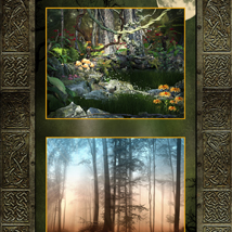 Enchanted Forest Backgrounds image 4