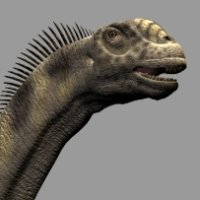 CamarasaurusDR - Extended License 3D Models Dinoraul