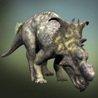 PachyrhinosaurusDR - Extended License 3D Models Dinoraul