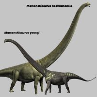 MamenchisaurusDR - Extended License 3D Models Dinoraul