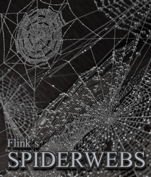 Flinks Spiderwebs by Flink