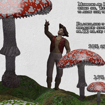 Enchanted Forest image 4