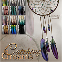 SV's Catching Dreams image 1