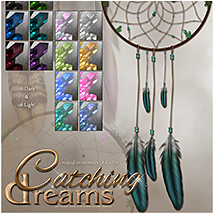 SV's Catching Dreams image 2