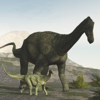 SaltasaurusDR - Extended License 3D Models Dinoraul