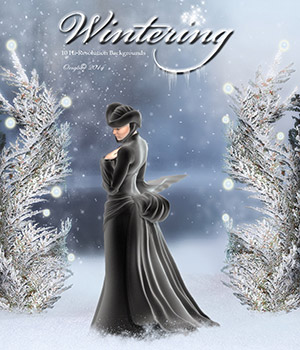 Wintering 2D Graphics ornylia