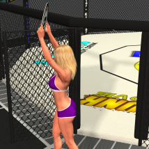 Fight Cage image 2