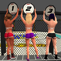 Fight Cage image 5